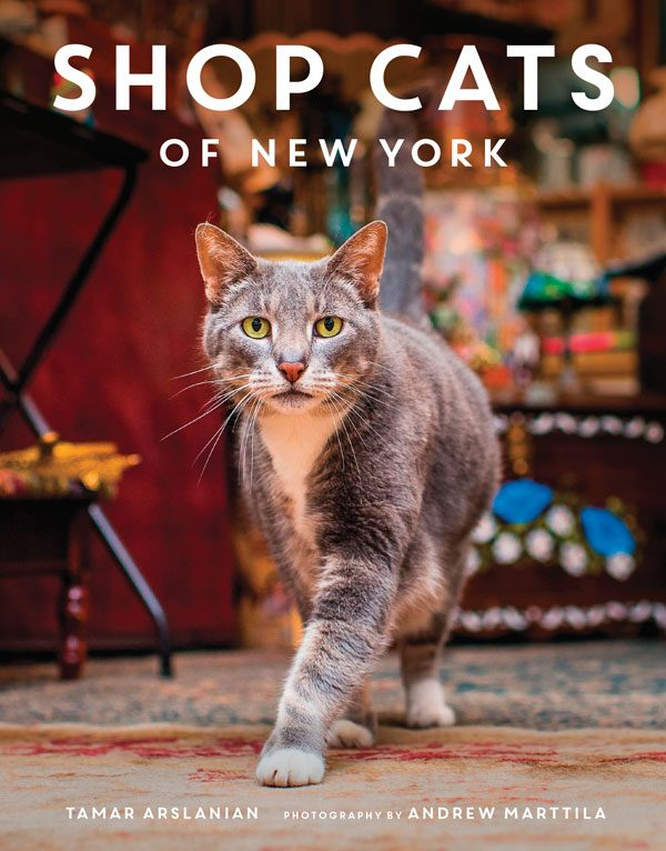 book-shop-cats-of-nyc-cover