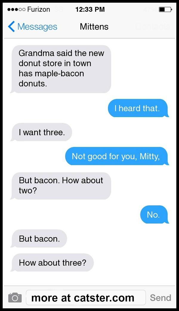 mittens-donut