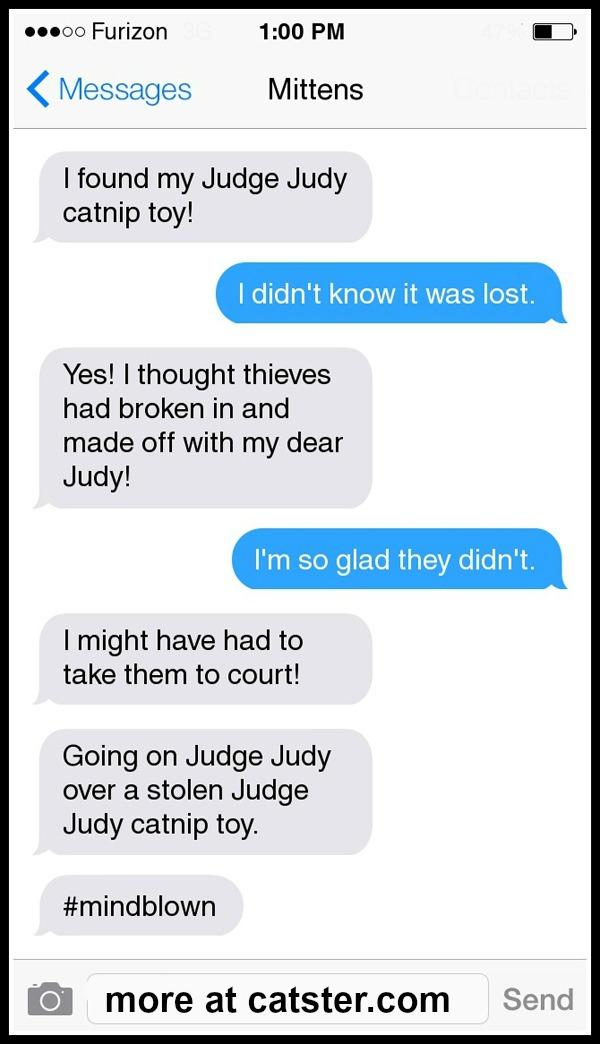 mittens-judge-judy-toy