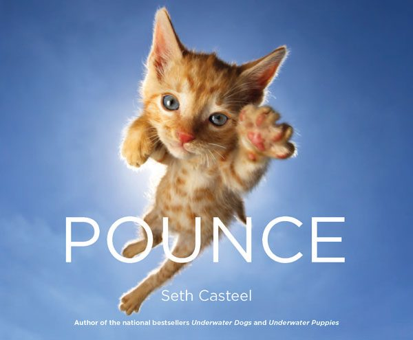 pounce-seth-casteel-cover