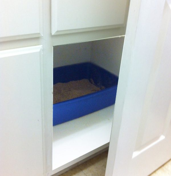 A litter box in a cabinet — where it shouldn't be!