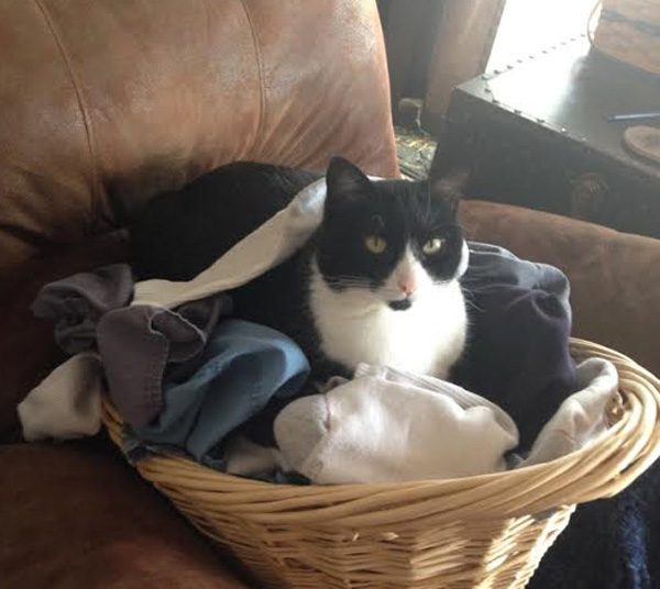 party mittens basket
