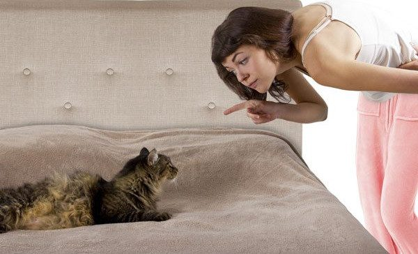 A woman pointing at a cat on a bed.