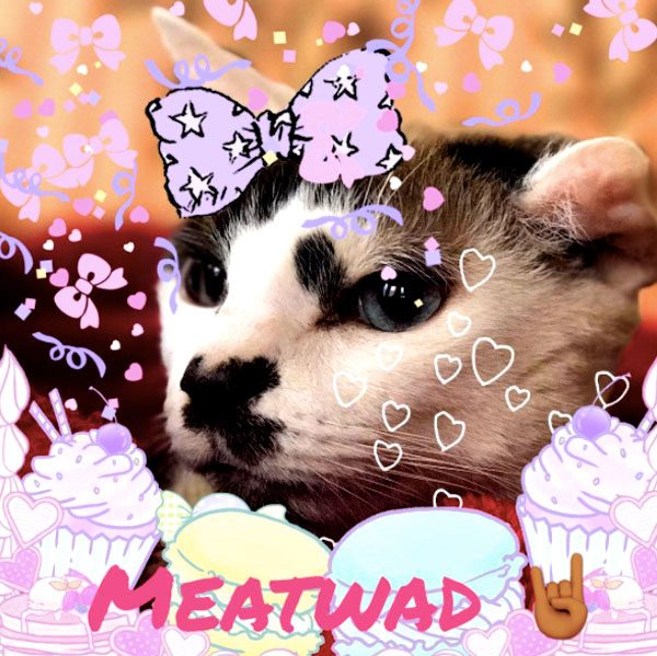 Meatwad-e