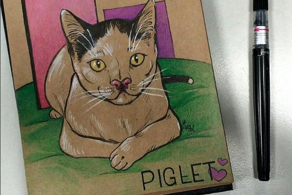 catster-piglet 7