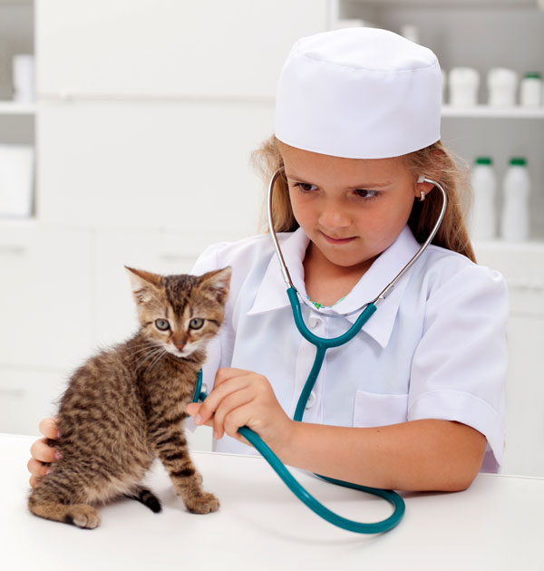 Like a lot of us, there was a time when I dreamed of being a vet. Photo by Shutterstock