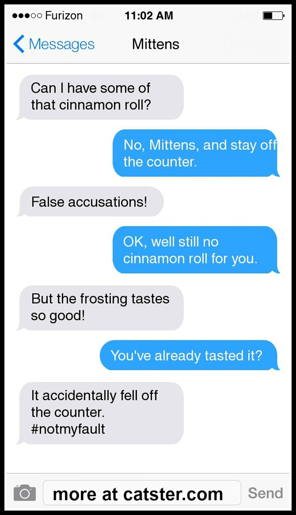 mittens-cinnamon-roll