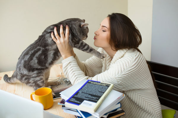 A woman picking up a cat and kissing him.