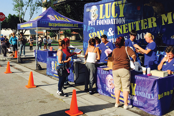 Lucy Pet Foundation's Spay and Neuter mobile clinics out and about in Los Angeles. Courtesy Lucy Pet Products.