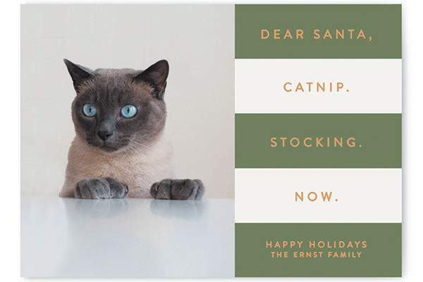Minted holiday card.