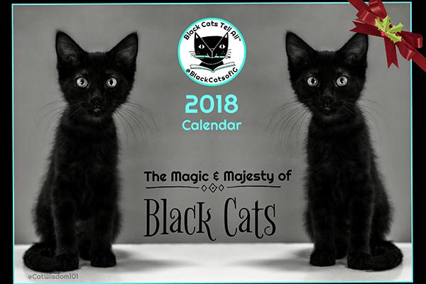 Black Cats Tell All calendar.