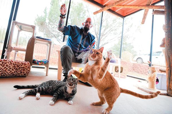Cat guy Jackson Galaxy with some feline friends.