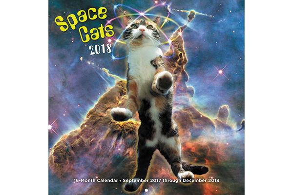 Cats In Space calendar.
