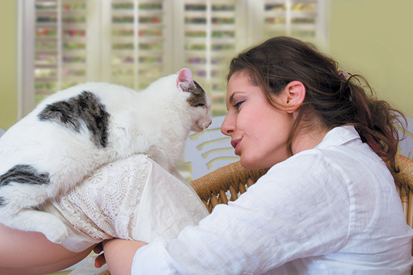 Cat Communication How To Talk To And Understand Your Cat Catster