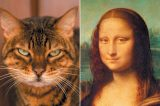 Stella the Cat and the Mona Lisa.