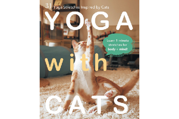 Yoga with Cats.