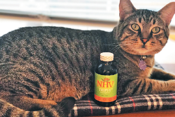 NHV Natural Pet Products Tripsy.