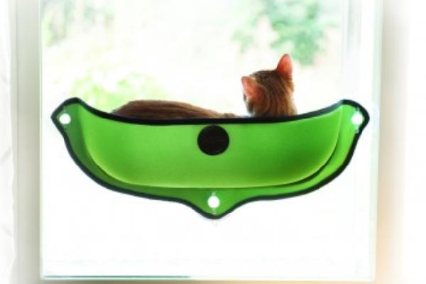 Window cat beds.