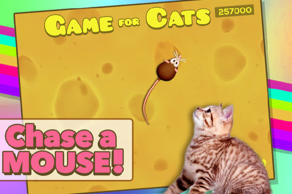 Game for Cats, Little Hiccup, LLC. itunes.com