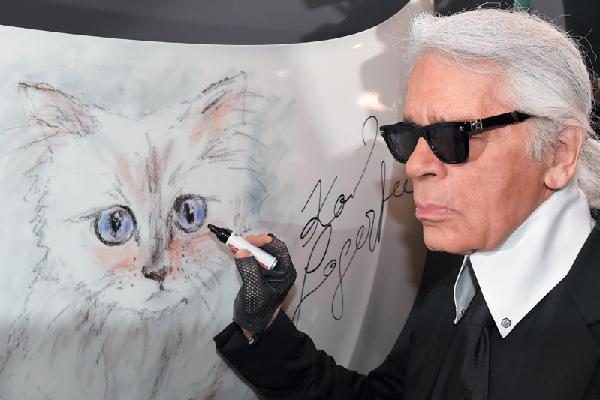 """Legendary designer Karl Lagerfeld has never kept his """"mews"""" a secret — Birman kitty Choupette."""