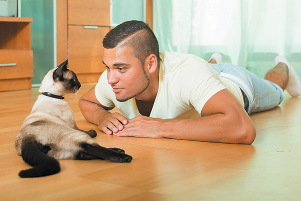 These routines are crucial to a cat's sense of well-being and general order in his domain. Photography ©JackF | Getty Images.