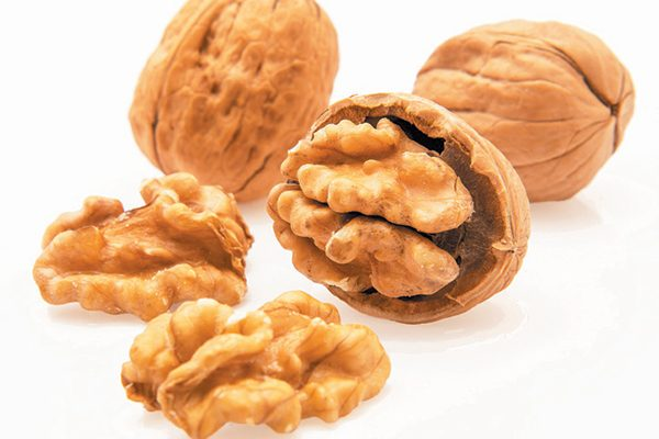 Walnut shells as natural cat litter does a great job at controlling odor. Photography ©serdar_yorulmaz | Getty Images.