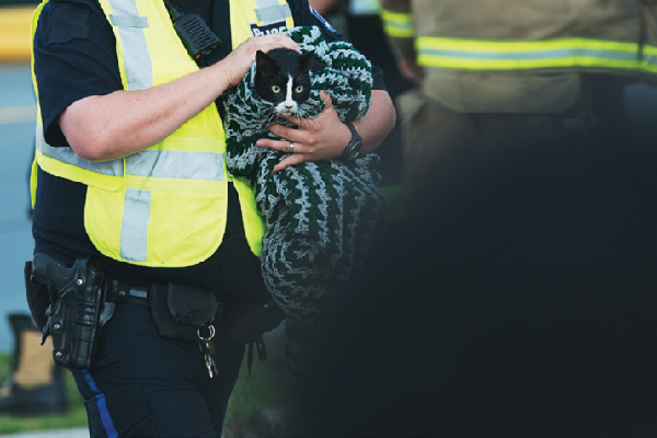 Police or other personnel holding a cat.