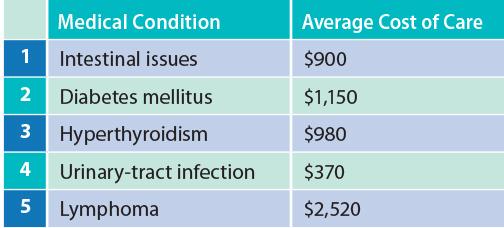 Top feline medical conditions in 2018.