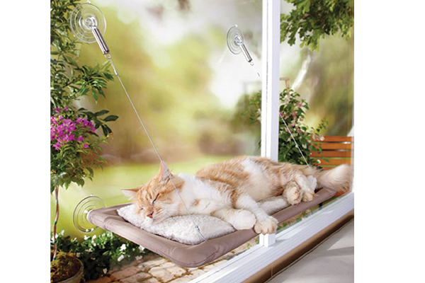 The Sunny Seat gives your cat a view of the great outdoors. osteranimalcare.com