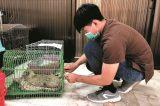 Worldwide Veterinary Service's International Training Centre