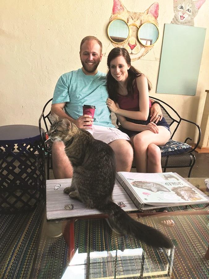 Gatos and Beans Cat Cafe