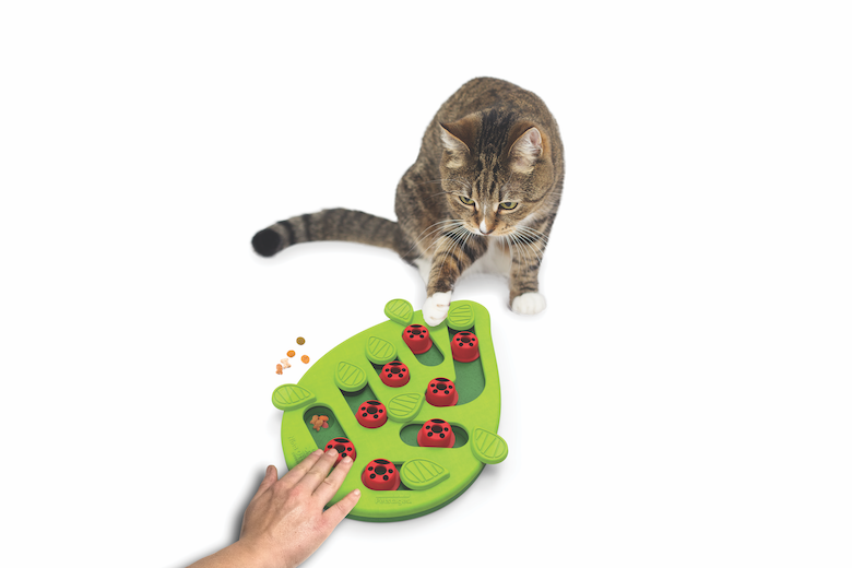 Cat-Friendly Products