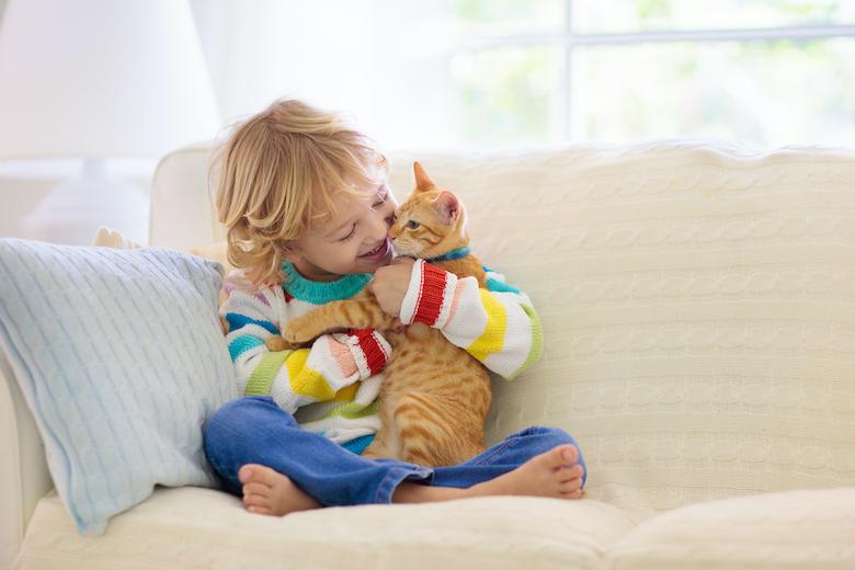 Cómo mantener la paz entre tu gato y tu hijo pequeño