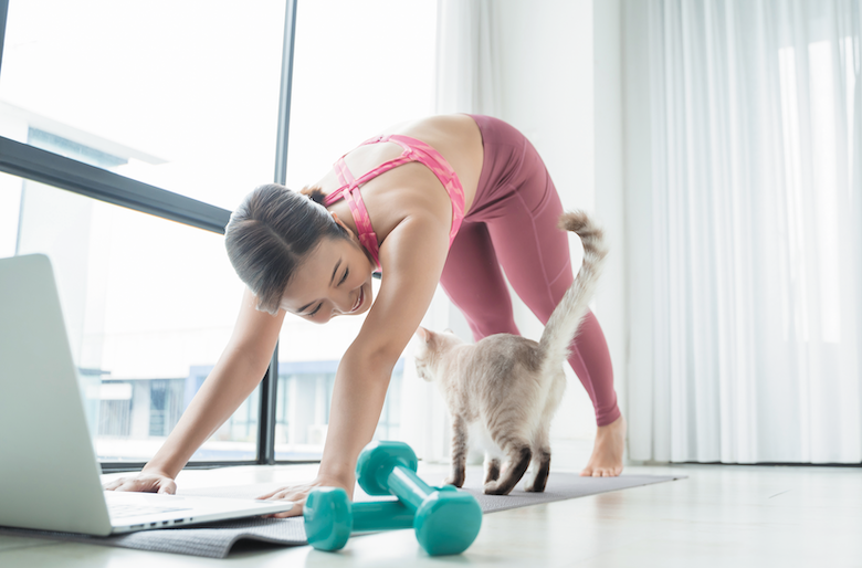 Exercise with your cat